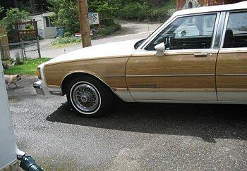 1985 Pontiac Parisienne Wagon for sale 100877124